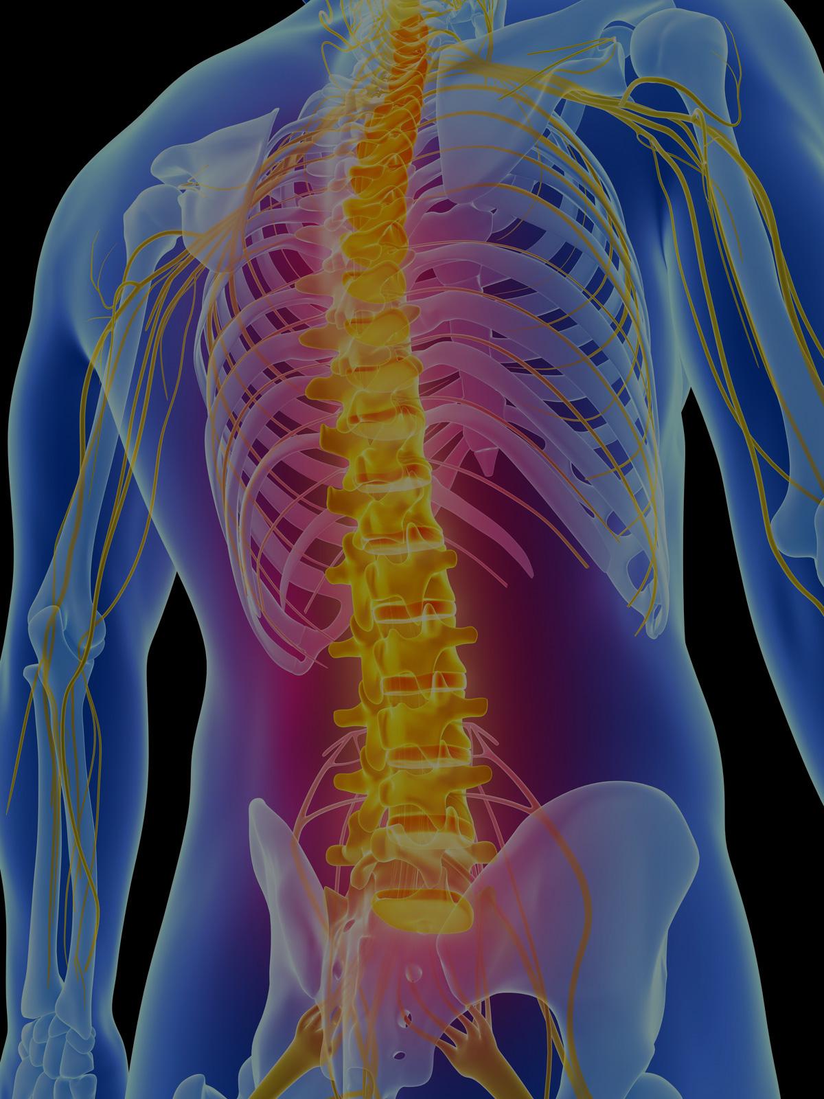 spine-slide